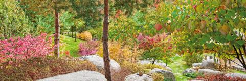 Koreanischer Garten Panorama Wandmotiv