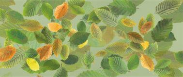 Baumblätter (Wandbilder als freie Collagen)