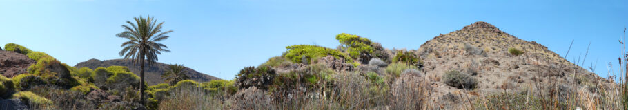 Cabo de Gata – filmreife Wandgestaltung wie im Western