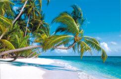 Seychellenstrand – Paradies an der Wand