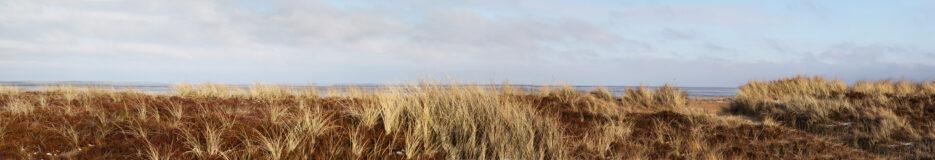 Wattenmeer Sylt – Meditieren an der Wand