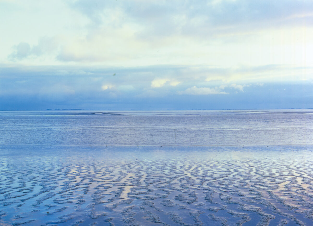 DrNice Wandmotiv Wattenmeer