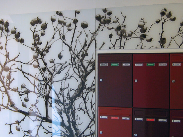 Eleganter Wandschutz: hinter Glas gedrucktes Bildmotiv