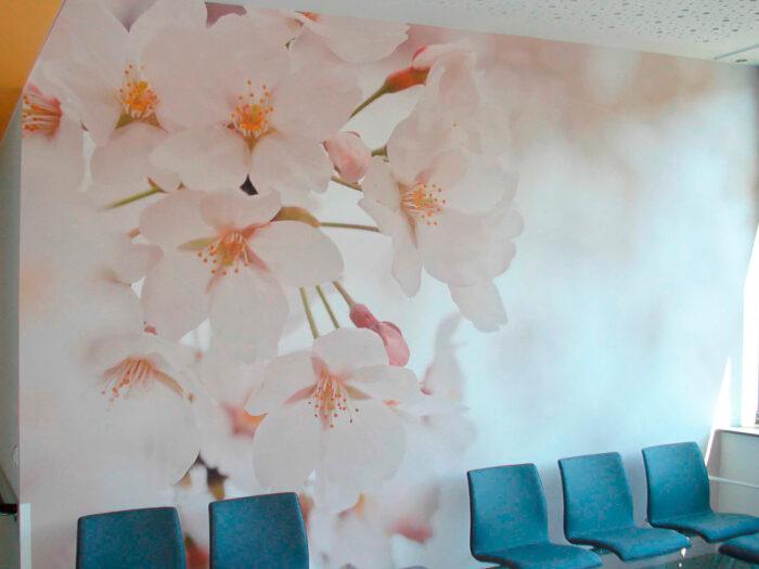 Wandgestaltung Krankenhaus Wartezonen